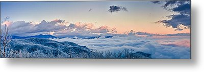 Metal Print featuring the photograph Frosty Morning by Joye Ardyn Durham