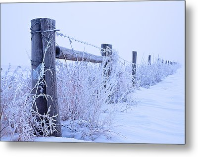 Metal Print featuring the photograph Frosty Morning by Monte Stevens