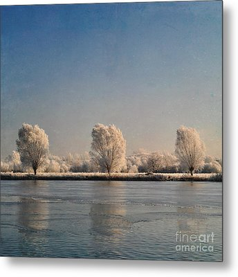 Frozen Lake Metal Print by Lyn Randle