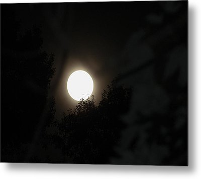 Metal Print featuring the photograph Full Moon Beauty by Ester  Rogers