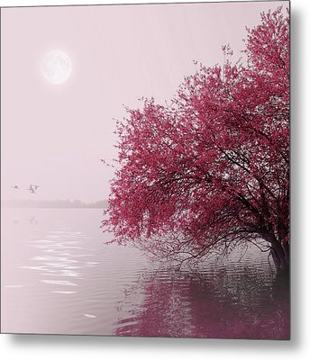 Full Moon On The Lake Metal Print by Philippe Sainte-Laudy Photography
