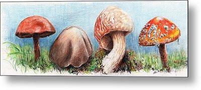 Fungus Panorama Metal Print