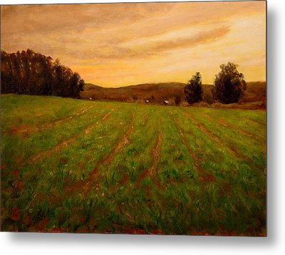 Furrowed Field Metal Print