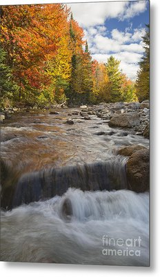 Gale River - White Mountains New Hampshire Metal Print by Erin Paul Donovan
