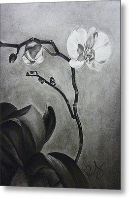 Galen's Orchid Metal Print