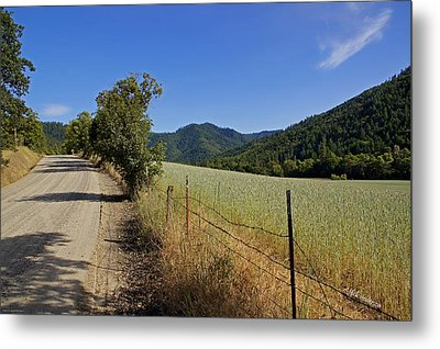 Galls Creek Road In Southern Oregon Metal Print by Mick Anderson