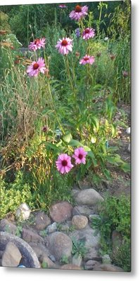 Garden Flowers And Rocks Metal Print by Thelma Harcum
