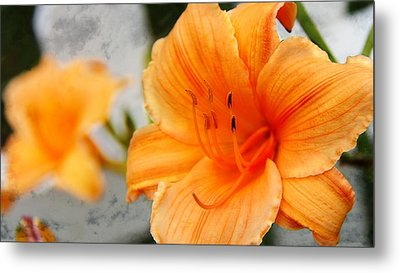 Metal Print featuring the photograph Garden Lily by Davandra Cribbie