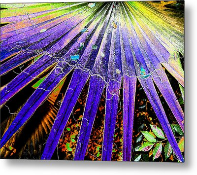 Garden Palm At Night Metal Print