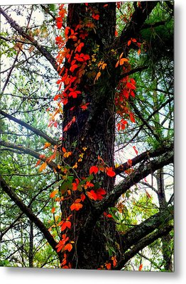 Garland Of Autumn Metal Print by Karen Wiles