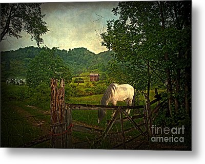 Gate To The Past Metal Print by Lianne Schneider