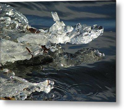 Gator Ice Metal Print