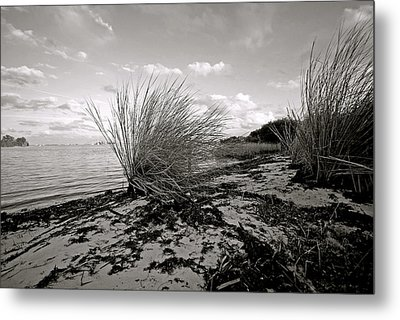 Gentle River Tide Metal Print