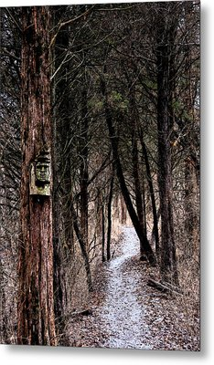 Gently Into The Forest My Friend Metal Print