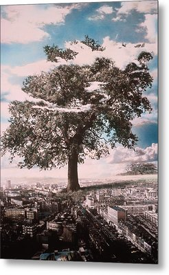Giant Tree In City Metal Print by Hag