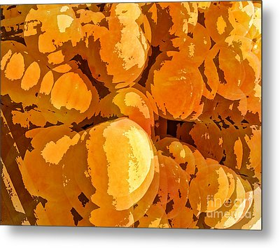 Give Peach A Chance Metal Print by Jim Moore