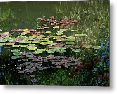 Giverny Lily Pads Metal Print by Eric Tressler