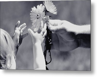 Giving Her Flowers Sweet Baby Hands Metal Print