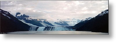 Glacier Bay Metal Print by C Sitton