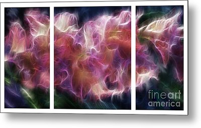 Gladiola Nebula Triptych Metal Print by Peter Piatt