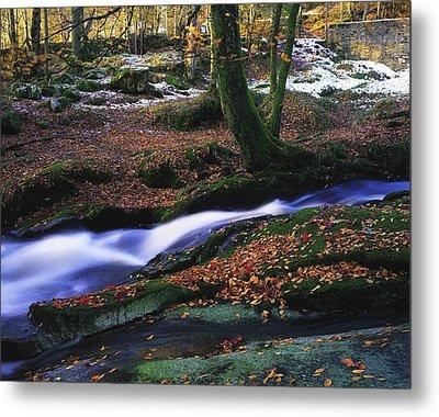 Glenmacnass Waterfall, Co Wicklow Metal Print by The Irish Image Collection