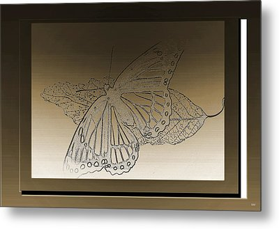 Glimmer Butterfly Collection Metal Print by Debra     Vatalaro