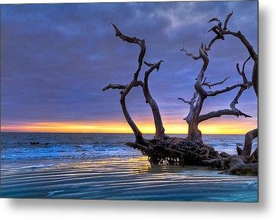 Glowing Sands At Driftwood Beach Metal Print by Debra and Dave Vanderlaan