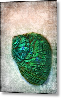 Glowing Seashell Metal Print by Judi Bagwell