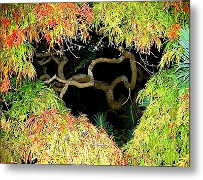 Gnarly Autumn Beauty Metal Print by Will Borden