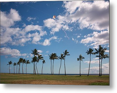 Metal Print featuring the photograph Go Fly A Kite by Craig Wood