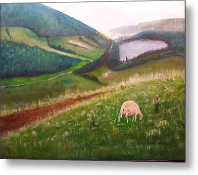 Goat On Welsh Mountain Metal Print by Malcolm Clark