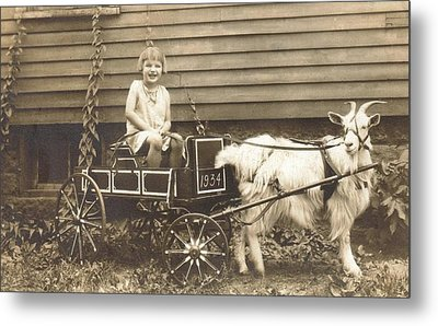 Metal Print featuring the photograph Goat Wagon by Bonfire Photography