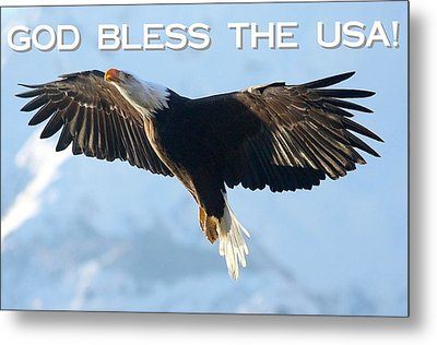 God Bless The Usa 2 Metal Print by Carrie OBrien Sibley