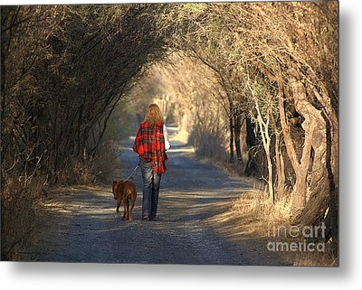 Going For A Walk  The Photograph Metal Print by John  Kolenberg
