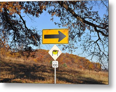 Going My Way Metal Print by Bill Cannon