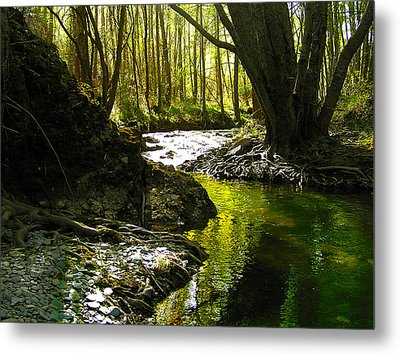 Gold River Metal Print by Guadalupe Nicole Barrionuevo