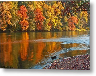 Gold Waters Metal Print by Tyra  OBryant