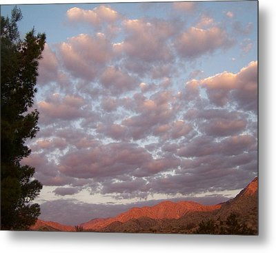 Metal Print featuring the photograph Golden Desert Sky by Christine Drake