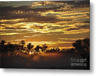 Metal Print featuring the photograph Golden Fog by Tamera James