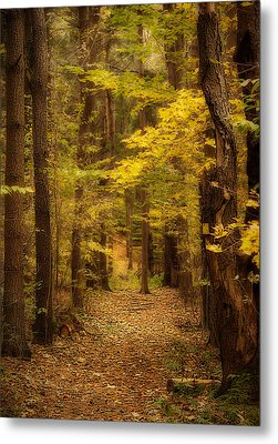 Golden Forest Metal Print