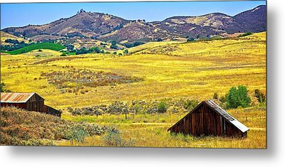 Golden Hills Metal Print
