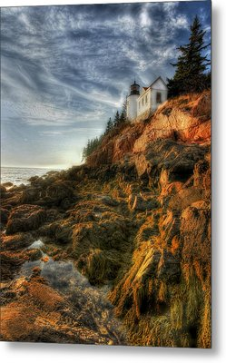 Golden Light At Bass Harbor Metal Print