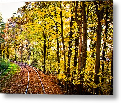 Golden Rails Metal Print by Sara Frank