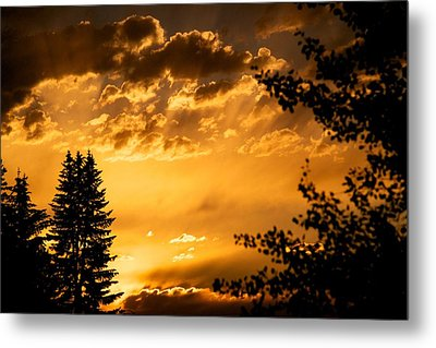 Golden Sky 2 Metal Print