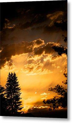 Golden Sky Metal Print by Kevin Bone