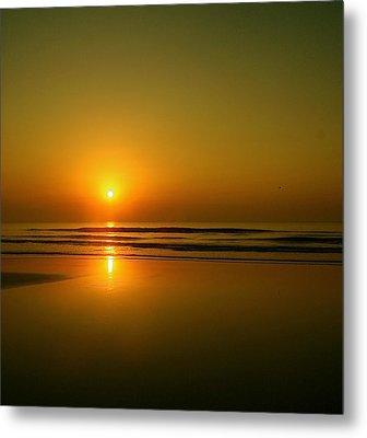 Golden Sunrise Metal Print by Darren Cole Butcher