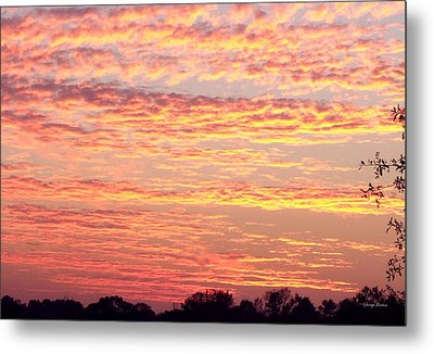 Golden Sunset 002 Metal Print by George Bostian