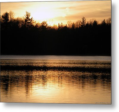 Metal Print featuring the photograph Golden Sunset by Penny Hunt
