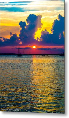 Golden Waters Metal Print by Shannon Harrington