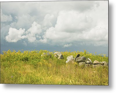 Goldenrod And Stone Wall In Farm Field Sky Maine Metal Print by Keith Webber Jr